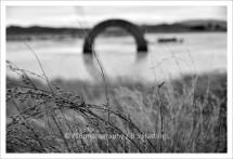 f16-gibbs_farm_20160922_43