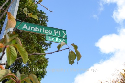 f16-DW-Ambrico-Place-HIGH-RES-1