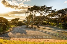 f16-DW-Muriwai-Bus-Park-FINISHED-HIGHRES-12