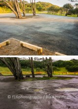 f16-DW-Muriwai-Bus-Park-FINISHED-HIGHRES-3
